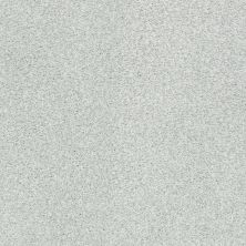 Shaw Floors Value Collections Fyc Tt Blue Net Morning Dew (t) 539T_5E023
