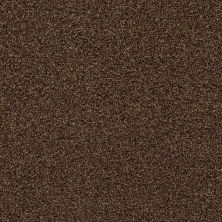 Shaw Floors Value Collections Fyc Tt Blue Net Chocolate Treat (t) 707T_5E023