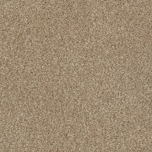 Shaw Floors Value Collections Fyc Tt Blue Net Falling Leaves (t) 720T_5E023