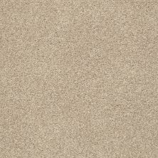 Shaw Floors Value Collections Fyc Tt Blue Net Walk On The Beach (t) 721T_5E023