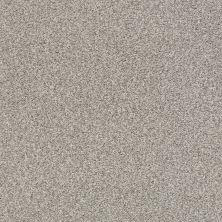 Shaw Floors Value Collections Fyc Tt Blue Net Back Patio (t) 724T_5E023