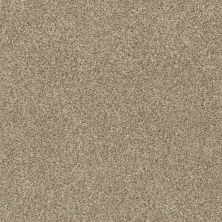Shaw Floors SFA Fyc Tt Blue Net Honey Tea (t) 750T_5E023