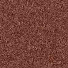 Shaw Floors SFA Fyc Tt Blue Net Serene Sunset (t) 804T_5E023