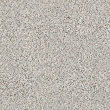 Shaw Floors Value Collections Fyc Ta II Dk Nat Net Slumber Party (a) 177A_5E025