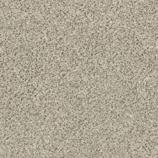 Shaw Floors Value Collections Fyc Ta II Dk Nat Net Online Date (a) 188A_5E025