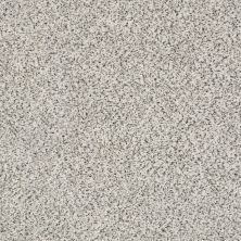 Shaw Floors Value Collections Fyc Ta II Dk Nat Net Great Mood (a) 189A_5E025