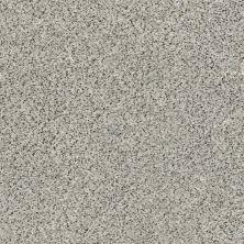 Shaw Floors Value Collections Fyc Ta Blue Dk Nat Net Online Date (a) 188A_5E026