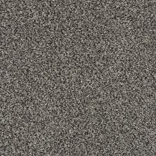 Shaw Floors Bellera Charmed Hues Meteorite 00501_5E039