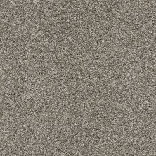 Shaw Floors Bellera Charmed Hues Brown 00700_5E039