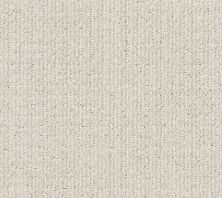 Shaw Floors Aerial Arts Frost 00500_5E040