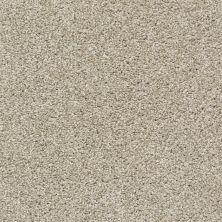 Shaw Floors Poised Quiet Tan 00112_5E042