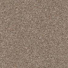 Shaw Floors Poised Brown Sugar 00710_5E042