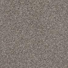 Shaw Floors Poised Chic Taupe 00714_5E042