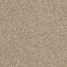 Shaw Floors Poised Artisan 00720_5E042