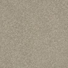 Shaw Floors Simply The Best After All II Sandstone 00723_5E045