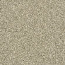 Shaw Floors Cabana Bay Tonal Net Wheat Field 00142_5E046