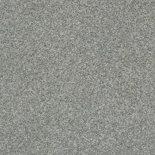 Shaw Floors Cabana Bay Tonal Net Stainless 00542_5E046
