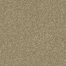 Shaw Floors Cabana Life (t) Net Dried Clay 00137_5E047