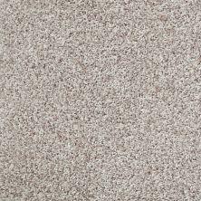 Shaw Floors Cool Flair Net Resort Sand 00101_5E048
