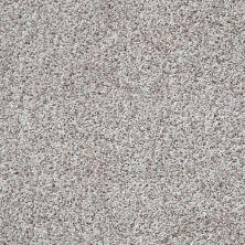 Shaw Floors Cool Flair Net Oyster 00104_5E048
