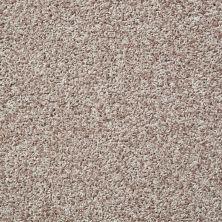 Shaw Floors Cool Flair Net Natural Wood 00105_5E048