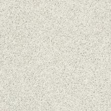 Shaw Floors Cool Flair Net Mayfair 00112_5E048