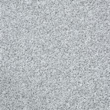 Shaw Floors Cool Flair Net Sterling Haze 00500_5E048