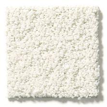 Shaw Floors Aerial View Net Cotton 00100_5E050