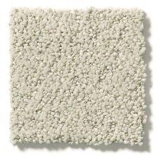 Shaw Floors Aerial View Net Spun Wool 00105_5E050