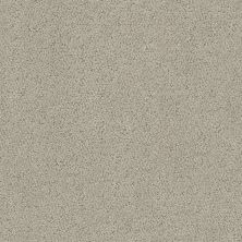 Shaw Floors Aerial View Net Natural Stone 00106_5E050