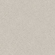 Shaw Floors Aerial View Net Haze 00501_5E050