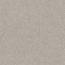 Shaw Floors Aerial View Net Powder Grey 00502_5E050