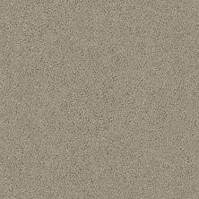 Shaw Floors Aerial View Net Bird Bath 00700_5E050