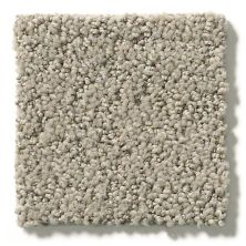 Shaw Floors Aerial View Net Artisan Taupe 00700_5E050