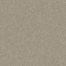 Shaw Floors Aerial View Net Burnished Clay 00701_5E050