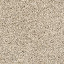Shaw Floors Bellera Charmed Hues Net Biscotti 00100_5E051