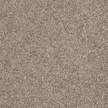 Shaw Floors Bellera Charmed Hues Net Sugar Cookie 00101_5E051