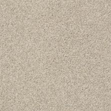 Shaw Floors Bellera Charmed Hues Net Antique White 00110_5E051