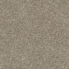 Shaw Floors Bellera Charmed Hues Net Wild Truffle 00710_5E051