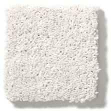 Shaw Floors After All II Net Eggshell 00120_5E054
