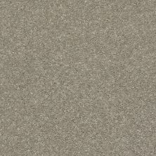 Shaw Floors After All II Net Rustic Taupe 00722_5E054
