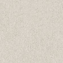 Shaw Floors Caress By Shaw Ombre Whisper Net Meditative 00501_5E061