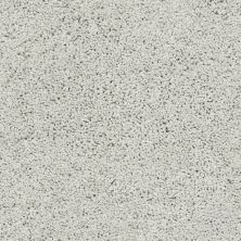 Shaw Floors Caress By Shaw Rich Opulence Net Sky Washed 00400_5E063
