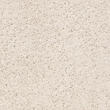 Shaw Floors Caress By Shaw Rich Opulence Net Blush 00800_5E063