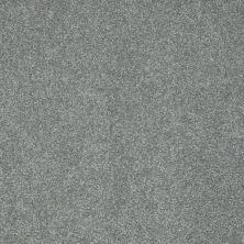 Shaw Floors Foundations Take The Floor Texture I Net Reflection 00541_5E066