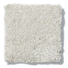 Shaw Floors Value Collections Take The Floor Texture II Net Alpaca 00140_5E067