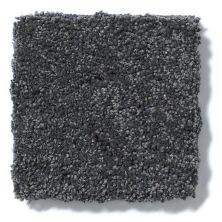 Shaw Floors Value Collections Take The Floor Texture II Net Urban Studio 00542_5E067