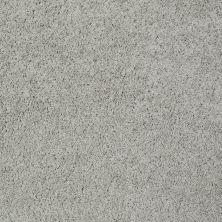 Shaw Floors Foundations Take The Floor Twist I Net Pebble Path 00135_5E069