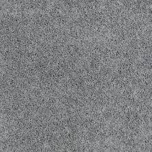 Shaw Floors Foundations Take The Floor Twist I Net Reflection 00541_5E069