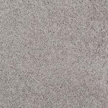 Shaw Floors Foundations Take The Floor Twist I Net Anchor 00546_5E069